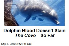 Dolphin Blood Doesn't Stain The Cove —So Far