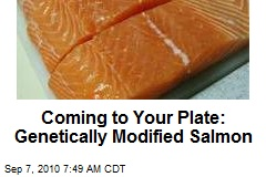 Coming to Your Plate: Genetically Modified Salmon