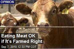 Eating Meat OK if It's Farmed Right